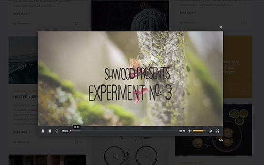 the grid wordpress plugin lightbox