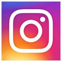the grid wordpress plugin instagram